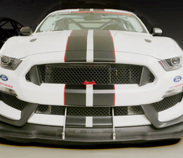 Custom front Splitter for Ford Mustang Shelby GT350R available through Capaldi Racing. Shown with Fence/Airdam